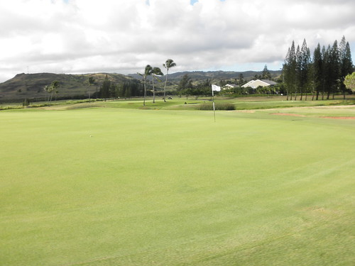 Turtle Bay Colf Course 063