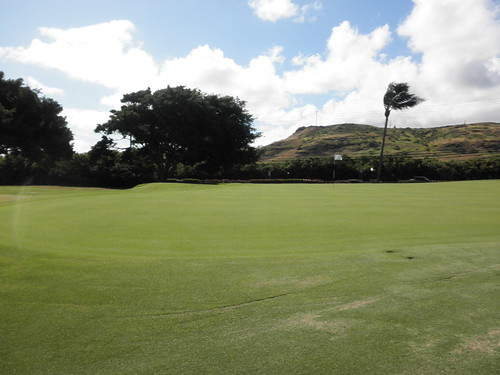 Turtle Bay Colf Course 115