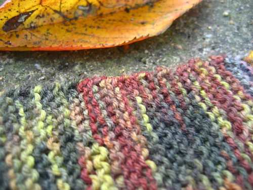 Autumn baktus shawl