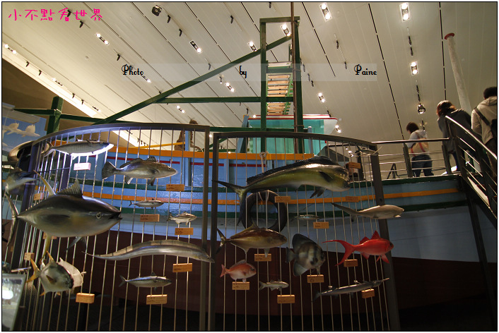 宜蘭蘭陽博物館 (19).JPG