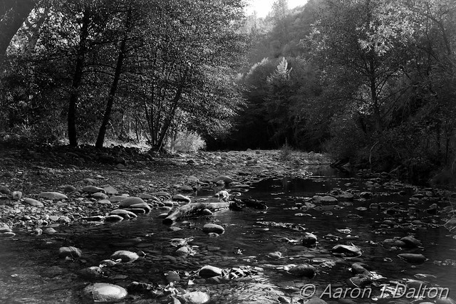 The Black and White Creek