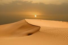 beautiful dream (SAUD ALRSHIAD) Tags: camera sky brown sun color nature landscape photography golden photo sand nikon flickr desert angle ngc kingdom arabic saudi arabia riyadh arabi yallow ksa غروب saud saudia 2011 yalow السعودية الرياض سماء صحراء desret aldhana natureplus سعود landscab kingdoom flickraward الثمامة d7000 الرشيد nikonflickraward thomamah nikond7000 alrshiad msawr سعودالرشيد saudarshiad saudalrshiad دي7000 نيكوندي7000 سعودحمودالرشيد