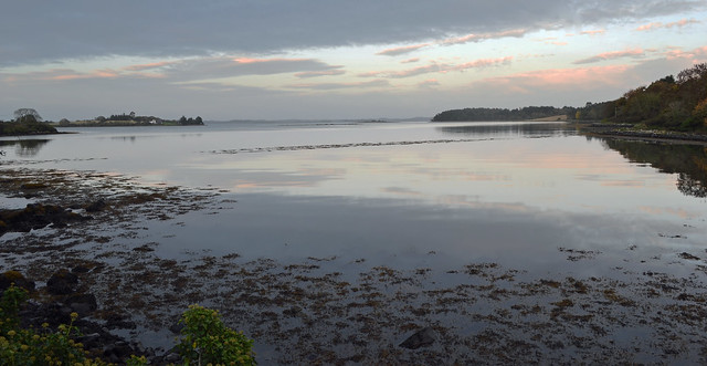 Strangford Lough near Nendrum