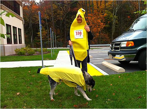 We r bananas