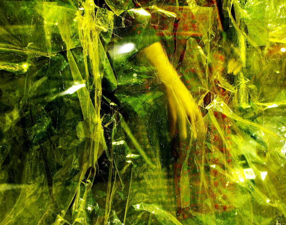 entre verdes1
