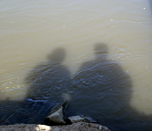 River Shadow