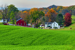 Joyful Simplicities Lancaster PA (Ireena Eleonora Worthy) Tags: autumn horse colour fall landscape pennsylvania farm amish pa lancaster fields redbarn northernstraitsphotography