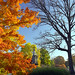 Cincinnati - Spring Grove Cemetery & Arboretum Between a Hard and a Soft Space