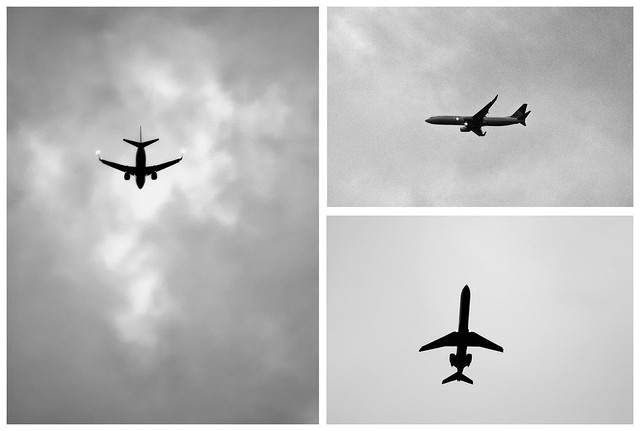 310/365: Counting Airplanes