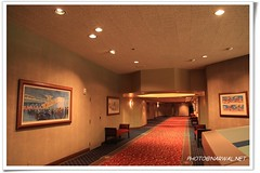 Disneyland Hotel (Narwal) Tags: california ca usa art way carpet hotel symbol disneyland magic mickey resort anaheim 迪士尼 1150 加州 地毯 ºoº