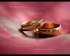 Vows made. Vows kept. (Elamcelt) Tags: rings weddinganniversary weddingvows