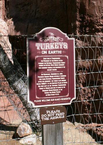 Disneyland Turkey Sign