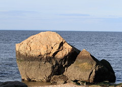 Glacial Erratic (sandy richard) Tags: longisland beaches wildwood wildwoodstatepark sandyrichard sandrarichard