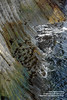 Snaefellsnes shs_n3_081488 (Stefnisson) Tags: sea summer landscape iceland cliffs og ísland sjór snæfellsnes strönd hafið stuðlaberg fjara klettar hnappadalssýsla stefnisson