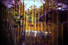 National Language (famnighjarta) Tags: yellow holga singapore kodak board pulau ubin singlish