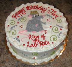 Lab Rat 300044 (Creative Cakes - Tinley Park / Naperville) Tags: lab rat doctor medicine freehand kids kid
