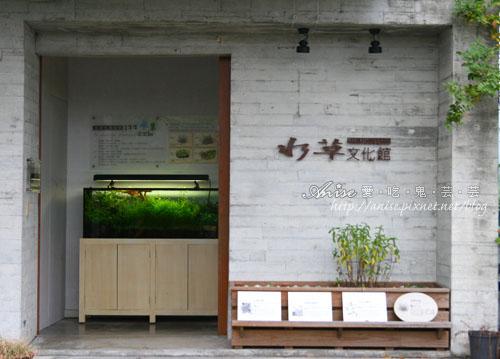 勝洋水草004.jpg