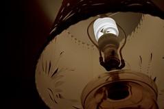 Going Green (Light Collector) Tags: light bulb flourescent cfl energysaver goinggreen ourdailychallenge