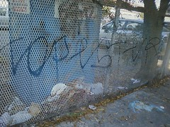 topester (Grits n' Gravy) Tags: fpm topest