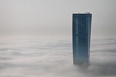 Floating above the fog (momentaryawe.com) Tags: above building fog clouds dubai cloudy uae foggy middleeast surreal floating highrise unitedarabemirates d300s catalinmarin momentaryawecom