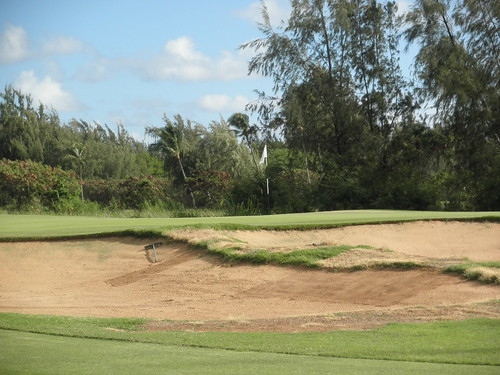 Turtle Bay Colf Course 102