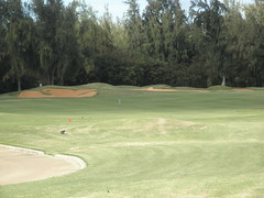 Turtle Bay Colf Course 318