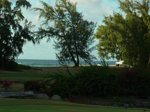Turtle Bay Colf Course 405