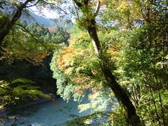 御岳山20111029-010