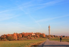 Bicycling Towards the Autumn (Maria_Globetrotter) Tags: autumn building day stockholm clear kaknstornet hst tallest kakns byggnad hgsta