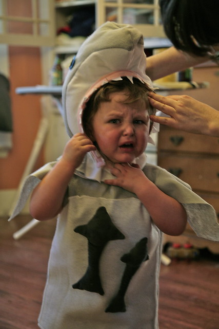 Shark costume fiasco.