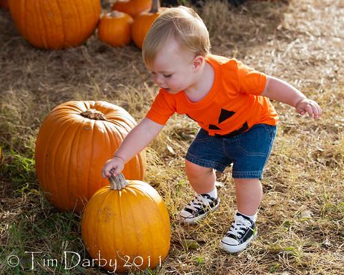 2011-10-19 - Pumpkin Patch-1