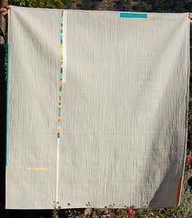 """fact or fiction"" quilt back (bloomingpoppies) Tags: solids stacked whitesashing bloggersquiltfest"