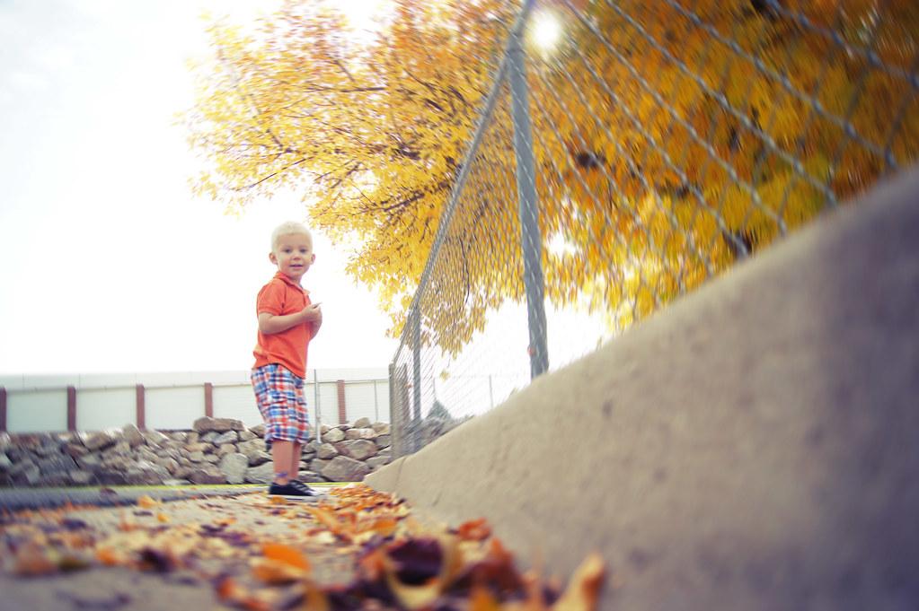 fallwalk6