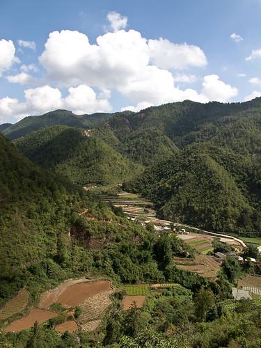 Terraced fields in valley