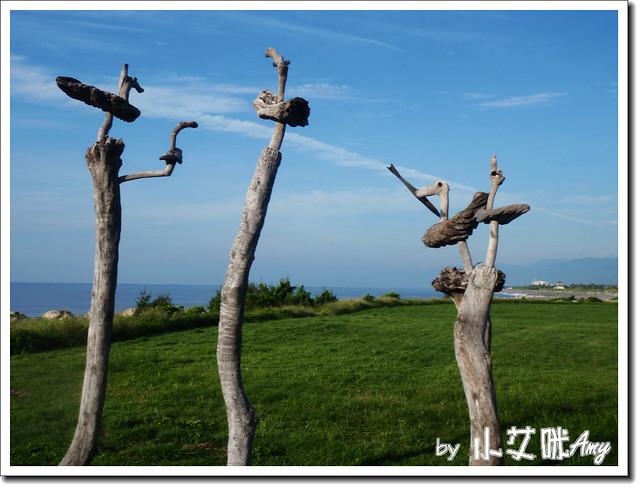 台東森林公園琵琶湖P7242429