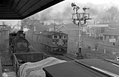 an afternoon in 1970:  3 (sth475) Tags: railroad blackandwhite bw home monochrome train vintage spring diesel bracket engine railway loco australia historic steam negative nsw scanned locomotive 1970 favourite signal worldseries goodwin infocus alco goulburn highquality mainsouth southerntablelands 4410 5132 lowerquadrant beyerpeacock nswgr nswr d50class 44class no2end standardgoods dl500b