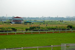 Madras Race Club