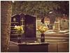 Marble Reflection. (syam C) Tags: flowers tree texture cemetery reflections petals brighton australia victoria graves layers marble 1855 gravestones photoshopelements seniorsweek canona710 coffeeshopaction atticvintage adamlindsaygordontour