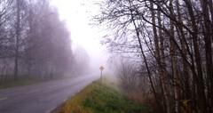 Ensam blir ensam (TinaOo) Tags: fog dimma disapearing perssonspack försvinner