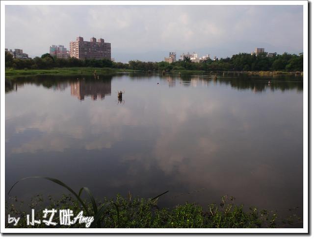 羅東林業中心P7262714