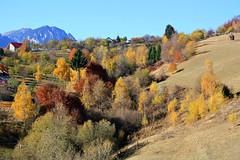 Piatra Craiului, Transylvania, Ro (Valerian M.1) Tags: nature europa europe romania transylvania canoneos brasov romanians 1000d canoneos1000d