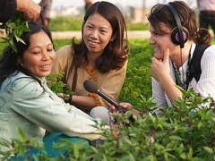 ABC Rural Journalist Melanie Simms interviewing a Vietnamese smallholder (ACIAR Australia) Tags: media vietnam abc hanoi interview crawford journalist easia taken2007 sourcecoretext publishedpartnersjulyoctober2007