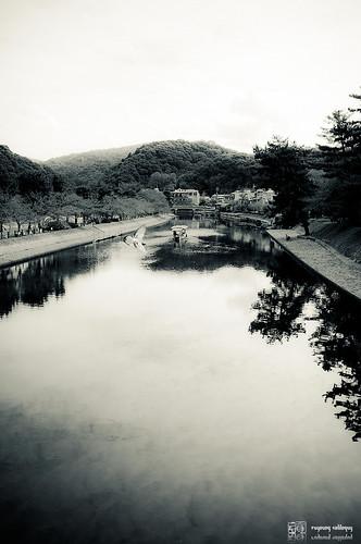 Fuji_X100_beauty_21