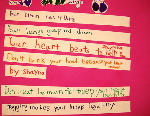 Shayna's Heart, Brains and Lungs Project