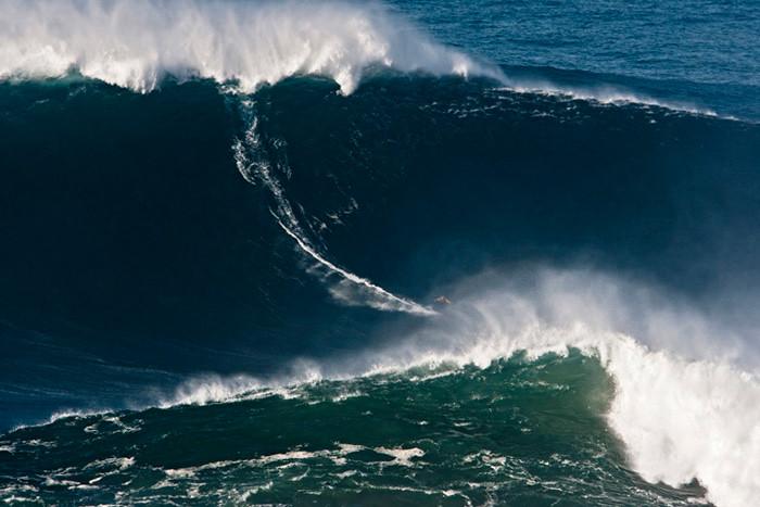Surfeando la ola forex