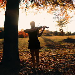 conducting the seasons. (Casey David) Tags: autumn trees sunset red summer portrait music orange woman black tree fall girl fashion yellow project golden leaf spring model day dof seasons bokeh african days violin africanamerican 365 sheetmusic leafs violinist violins goldenlight makingmusic changeofseasons project365 365days fallingleafs girlplayingviolin caseydaivdphotography megford