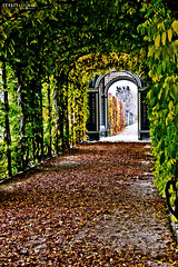 autumn gate (FREISTELLEN) Tags: world schnbrunn vienna city travel autumn trees light sun colour tree castle heritage berg leaves architecture contrast photoshop canon dawn lights austria abend sterreich europe colours sonnenuntergang sundown leer laub herbst culture wolken places somerset tourist adobe architektur schloss sonne bltter baum einsamkeit schlosspark sonntag barock hdr emptiness burg menschenleer schoenbrunn weltkulturerbe einsam herbstlaub festung aussen gelnder blauestunde leav stereich spiegelreflexkamera weinhang daemmerung gegensatz freistellen sundownsonnenuntergang canoneos550d