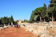 Anjar, Umayyad city, al-Walid I, 705-15, along the decumanus maximus (8) (Prof. Mortel) Tags: lebanon umayyad anjar