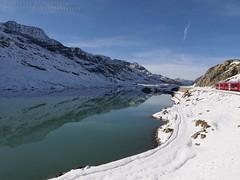 Bernina Express (d0minius) Tags: white lake nature digital landscape ed swiss olympus express zuiko canton swd bernina grigioni flickraward 1260mm f2840 blinkagain