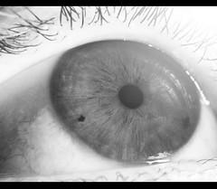 Look To The Light (epedQ) Tags: iris light bw brown white black macro reflection eye look canon rebel see blackwhite high key group eyeball highkey eyelash t3 bellows depth pupil the bellow canont3